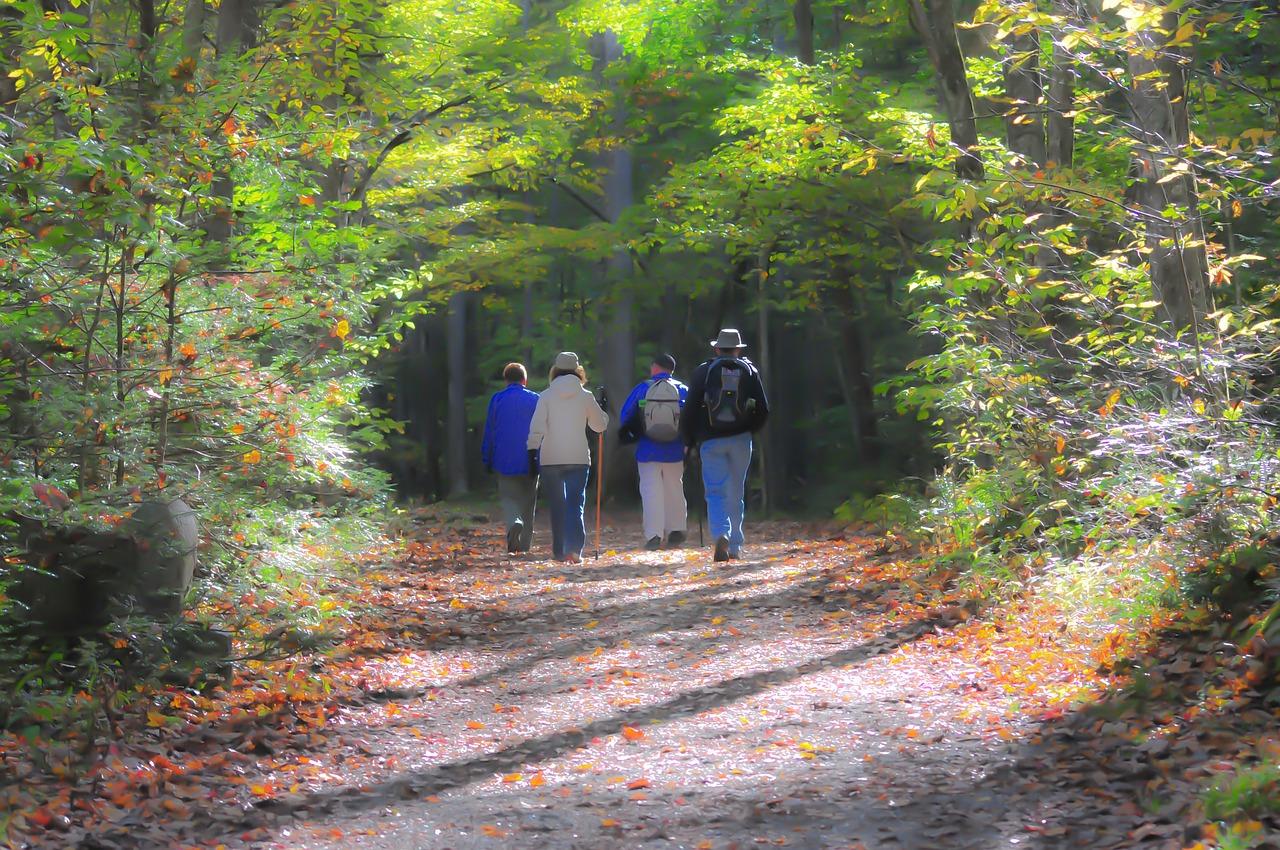hiking, trail, smoky mountains